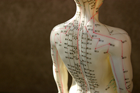 AcupunctureEduction-Small1